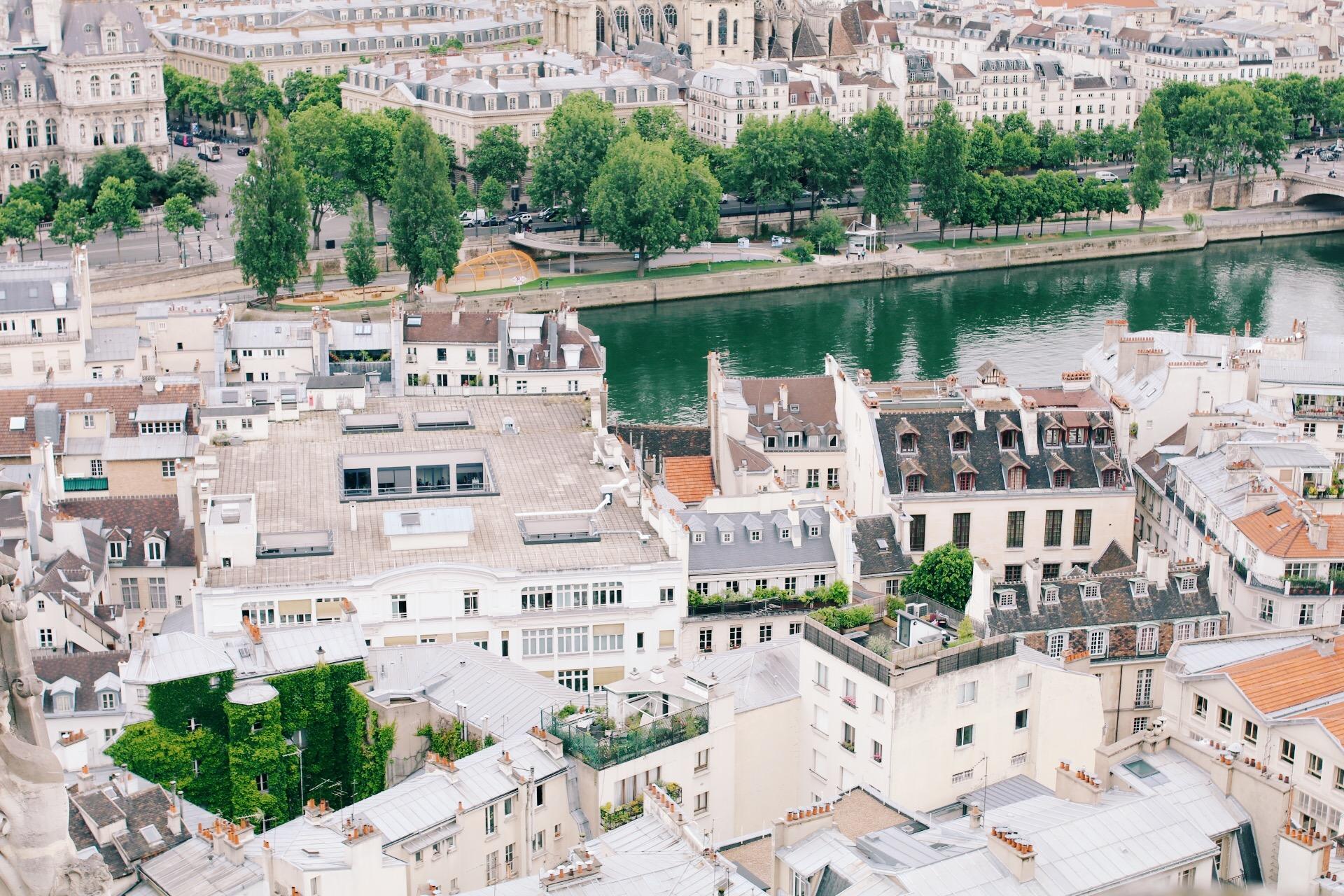 Paris // Willivia